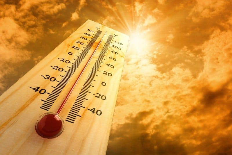 Temperatur Hete Hetebølge Varme Varmt