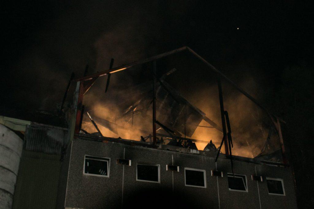 Brann Erfjord gård bonde